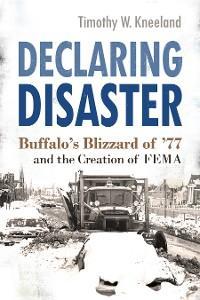 Declaring Disaster photo №1
