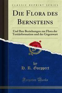 Die Flora des Bernsteins Foto №1