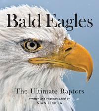 Bald Eagles photo №1