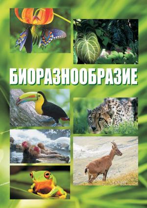 Биоразнообразие. Курс лекций photo №1
