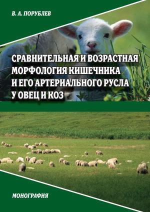 Сравнительная и возрастная морфология кишечника и его артериального русла у овец и коз photo №1