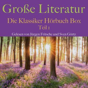 Große Literatur: Die Klassiker Hörbuch Box Foto №1