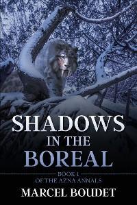 Shadows in the Boreal photo №1