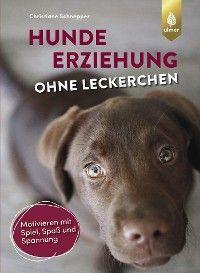 Hundeerziehung ohne Leckerchen Foto №1
