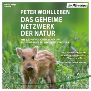 Das geheime Netzwerk der Natur Foto №1