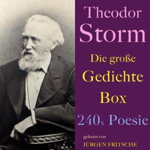 Theodor Storm: Die große Gedichte Box Foto №1