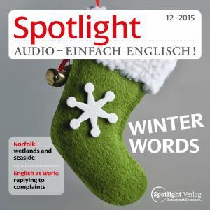 Englisch lernen Audio - Der Winter photo №1