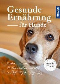Gesunde Ernährung für Hunde Foto №1