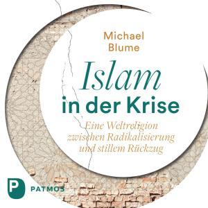 Islam in der Krise Foto №1