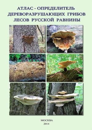 Атлас-определитель дереворазрушающих грибов лесов Русской равнины photo №1