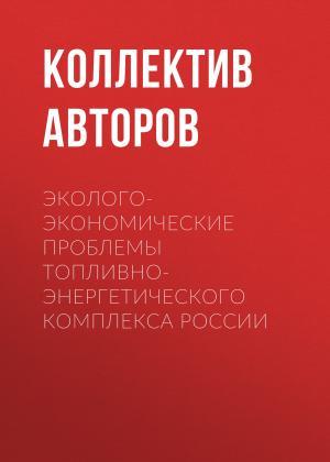 Эколого-экономические проблемы топливно-энергетического комплекса России Foto №1