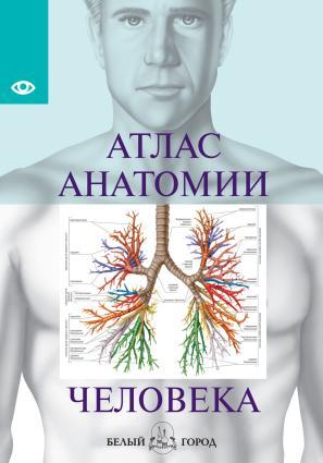 Атлас анатомии человека. Все органы человеческого тела Foto №1