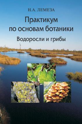 Практикум по основам ботаники. Водоросли и грибы