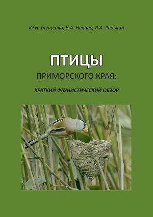 Птицы Приморского края: краткий фаунистический обзор photo №1