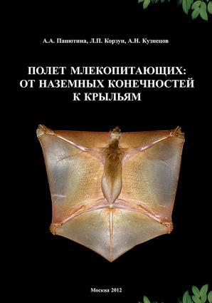 Полет млекопитающих: от наземных конечностей к крыльям Foto №1