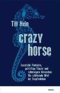 Crazy Horse Foto №1
