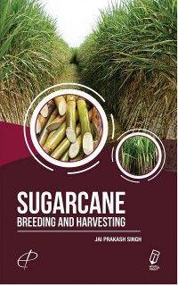 Sugarcane : Breeding and Harvesting photo №1