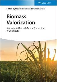 Biomass Valorization photo №1