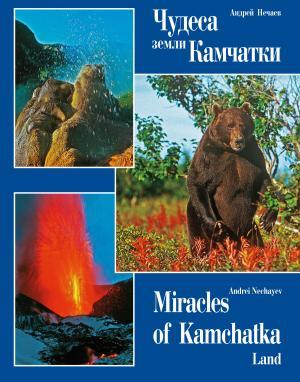 Чудеса земли Камчатки / Miracles of Kamchatka Land photo №1