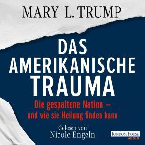 Das amerikanische Trauma Foto №1