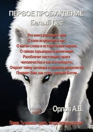 Первое Пробуждение. Белый пес. Помни, Ты можешь судить, только познав целостно! photo №1