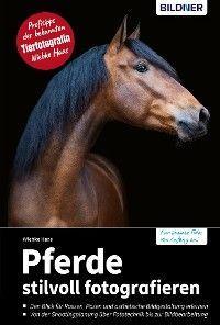 Pferde stilvoll fotografieren