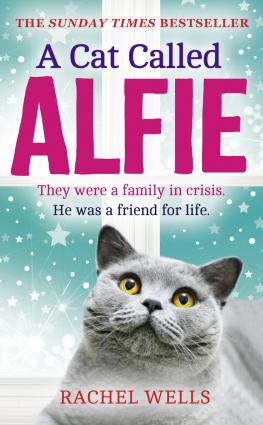 A Cat Called Alfie Foto №1