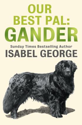 Our Best Pal: Gander Foto №1