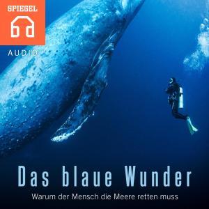 Das blaue Wunder Foto №1