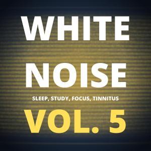 White Noise (Vol. 5) photo №1