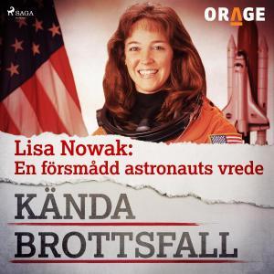 Lisa Nowak: En försmådd astronauts vrede photo №1