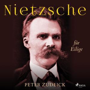 Nietzsche für Eilige Foto №1