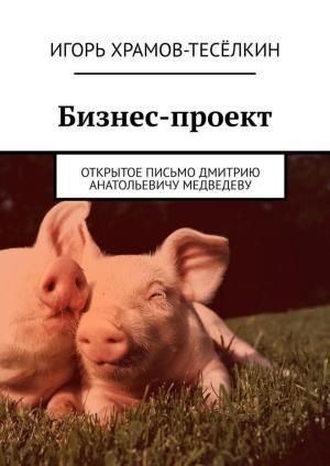 Бизнес-проект. Открытое письмо Дмитрию Анатольевичу Медведеву Foto №1