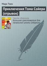 Приключения Тома Сойера (отрывок) photo №1