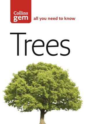 Trees photo №1