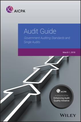 Audit Guide Foto №1