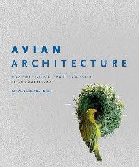 Avian Architecture photo №1