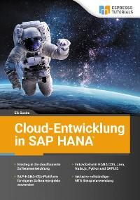 Cloud-Entwicklung in SAP HANA Foto №1