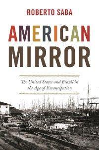 American Mirror photo №1