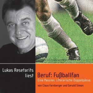 Beruf: Fußballfan Foto №1