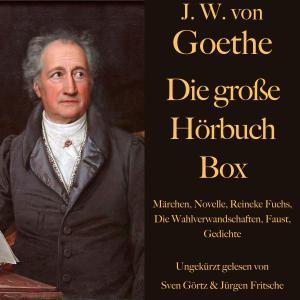 Johann Wolfgang von Goethe: Die große Hörbuch Box Foto №1
