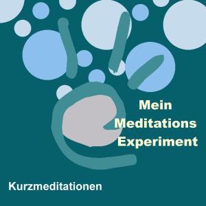 Das Meditations-Experiment Foto №1