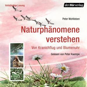 Naturphänomene verstehen Foto №1