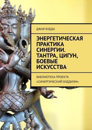 Энергетическая практика синергии. Тантра, цигун, боевые искусства. Библиотекапроекта «Синергический буддизм» photo №1