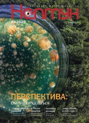Нептун №6/2020