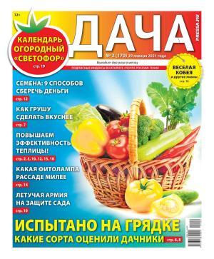 Дача Pressa.ru 02-2021