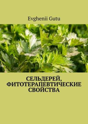 Сельдерей, фитотерапевтические свойства photo №1