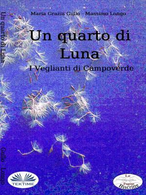 Un Quarto Di Luna photo №1