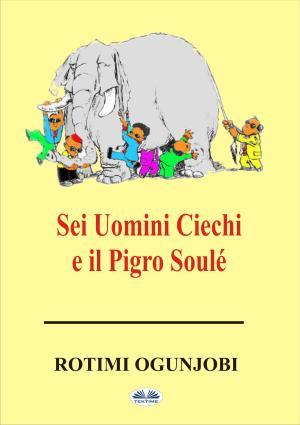 Sei Uomini Ciechi E Il Pigro Soulé photo №1