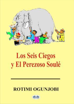 Los Seis Ciegos Y El Perezoso Soulé photo №1